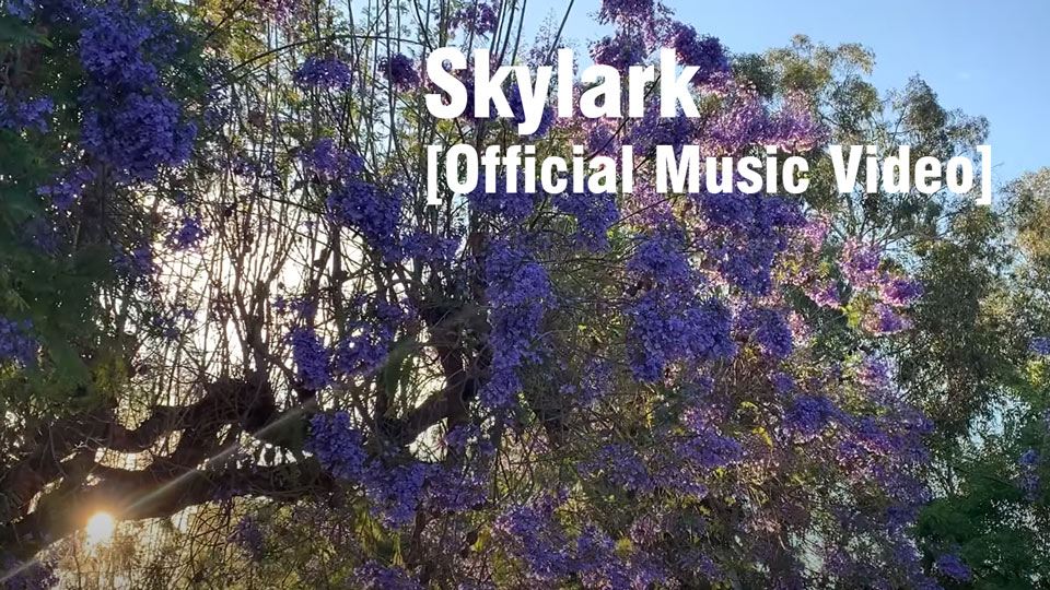 Aimee Nolte - Skylark [Official Music Video]