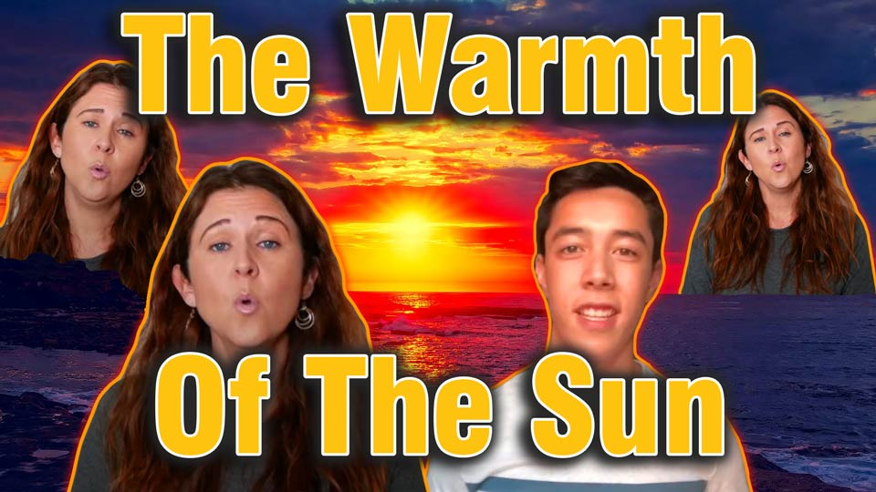 The Warmth Of The Sun - Cover